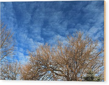 Trees And Clouds Wood Print by Jay Nodianos