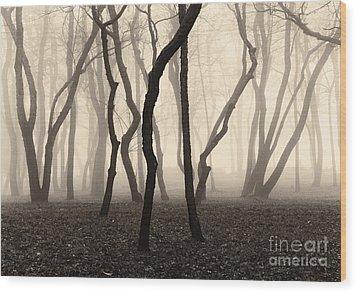 Trees And Fog No. 1 Wood Print