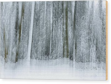 Trees And Snow Abstract Wood Print by David Birchall