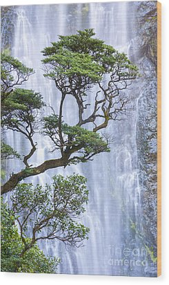 Trees And Waterfall Wood Print