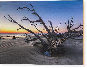 Trees At Driftwood Beach Wood Print by Debra and Dave Vanderlaan