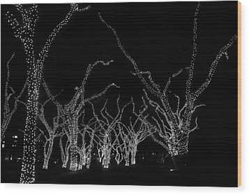 Wood Print featuring the photograph Trees Bejeweled II by Jim Snyder