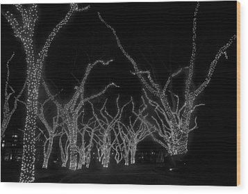 Wood Print featuring the photograph Trees Bejeweled by Jim Snyder