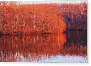Trees By River Wood Print by Jose Lopez