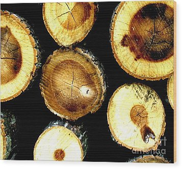 Trees End Wood Print by Amy Sorrell