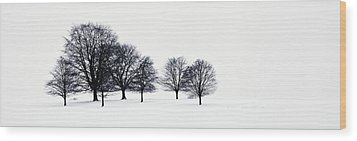 Trees In A Snowy Field In Chatsworth Wood Print by John Doornkamp