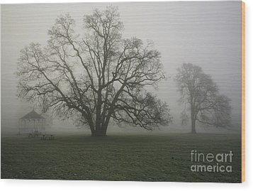Trees In Fog Wood Print by Rich Collins