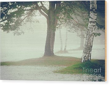 Wood Print featuring the photograph Trees In Fog by Silvia Ganora