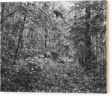 Trees In Pencil Wood Print