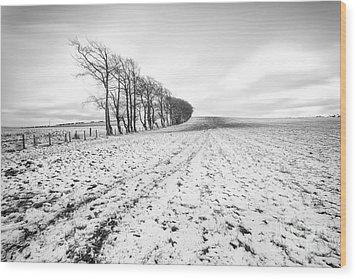 Trees In Snow Scotland V Wood Print by John Farnan