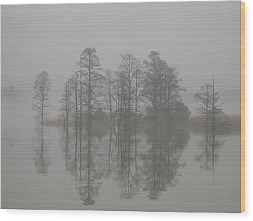 Wood Print featuring the digital art Trees In The Mist  by Claude McCoy