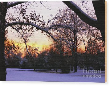 Trees In Wintry Pennsylvania Twilight Wood Print by Anna Lisa Yoder