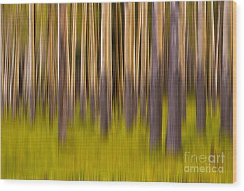 Wood Print featuring the digital art Trees by Jerry Fornarotto