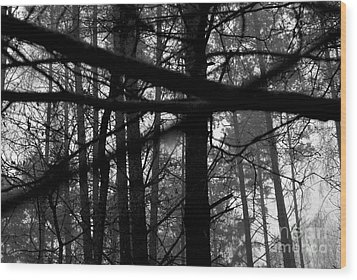 Wood Print featuring the photograph How Many Triangles Can You See? by Maja Sokolowska