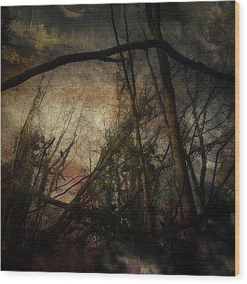 Trees No. 5 Wood Print by Andy Walsh