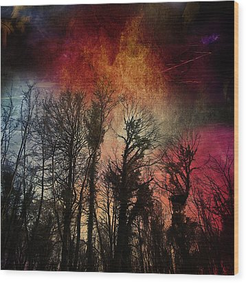 Trees No.7  Wood Print by Andy Walsh