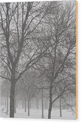Trees Of Silence Wood Print