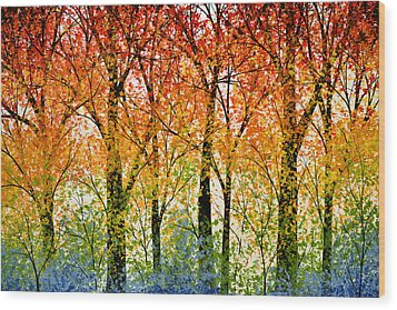 Trees Of The Rainbow Wood Print