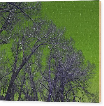 Trees On Green Sky Wood Print