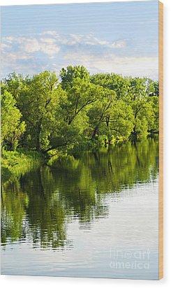 Trees Reflecting In River Wood Print by Elena Elisseeva