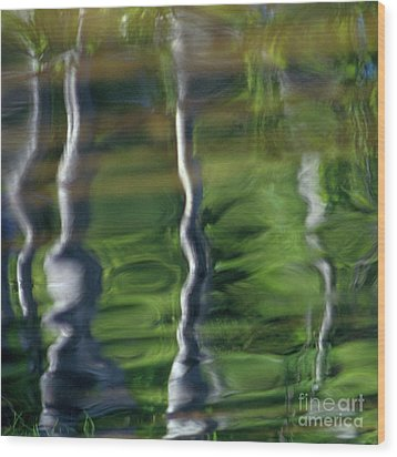 Trees Reflections On The River Wood Print by Heiko Koehrer-Wagner