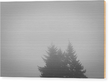 Treetops In Fog Wood Print