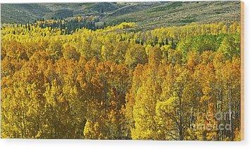 Tri Color Aspen Wood Print