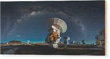 Tribute To Carl Sagan Wood Print by Adhemar Duro