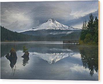 Trillium Reflections Wood Print by David  Forster