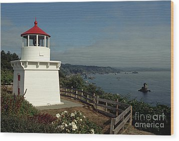 Wood Print featuring the photograph Trinidad Light by Sharon Elliott