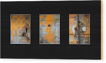 Triptych Old Metal Series Wood Print by Ann Powell