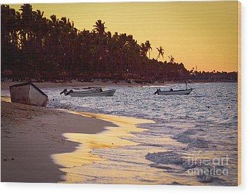 Tropical Beach At Sunset Wood Print by Elena Elisseeva