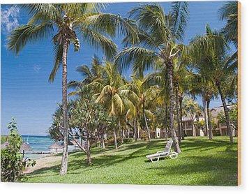 Tropical Beach I. Mauritius Wood Print by Jenny Rainbow