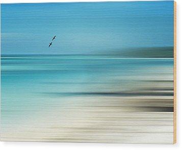 Tropical Cove Horizon Wood Print by Deborah Smith
