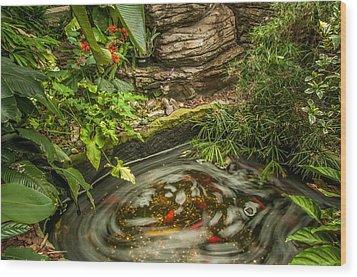 Tropical Koi Pond Swirl Wood Print