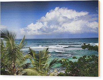 Tropical Dreams Wood Print by Daniel Sheldon