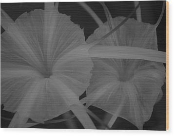 Wood Print featuring the photograph Tropical Garden by Miguel Winterpacht