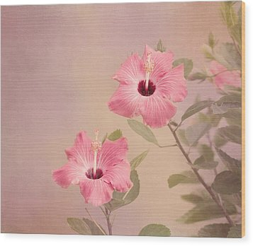 Tropical Hibiscus Wood Print by Kim Hojnacki