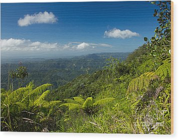 Tropical Highlands Wood Print