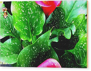 Tropical Leaves Wood Print by Marianne Dow