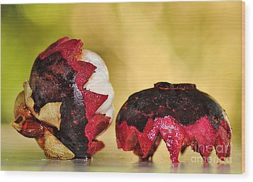 Tropical Mangosteen Wood Print by Kaye Menner