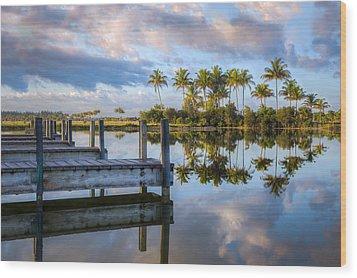 Tropical Morning Wood Print by Debra and Dave Vanderlaan