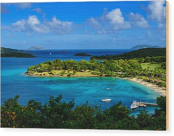 Tropical Paradise In The Virgin Islands Wood Print by Greg Norrell