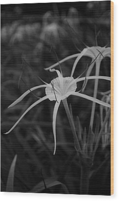 Wood Print featuring the photograph Tropical Paradise by Miguel Winterpacht
