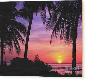 Tropical Paradise Wood Print by Scott Cameron