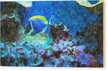 Tropical Seas Powder Blue Tang  Wood Print by Rosemarie E Seppala