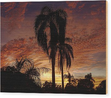 Tropical Sunset Wood Print by Kandy Hurley