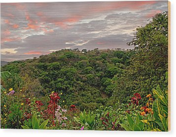 Wood Print featuring the photograph Tropical Sunset Landscape by Peggy Collins