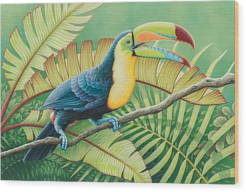 Tropical Toucan Wood Print by Tish Wynne
