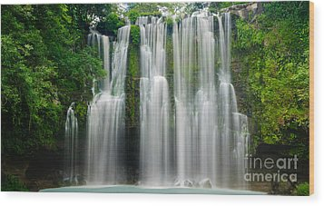 Tropical Waterfall Wood Print by Oscar Gutierrez